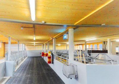 Muxel-Holzbautechnik_Stall-4-holzbau-technik-muxel-im-bregenzerwald